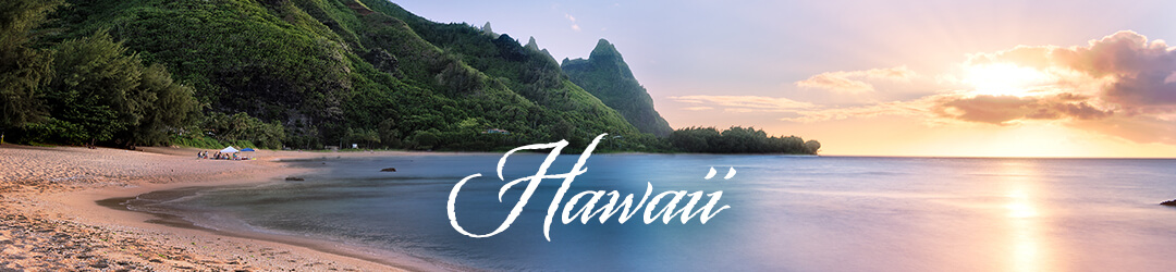Plan Your Wedding In Hawaii