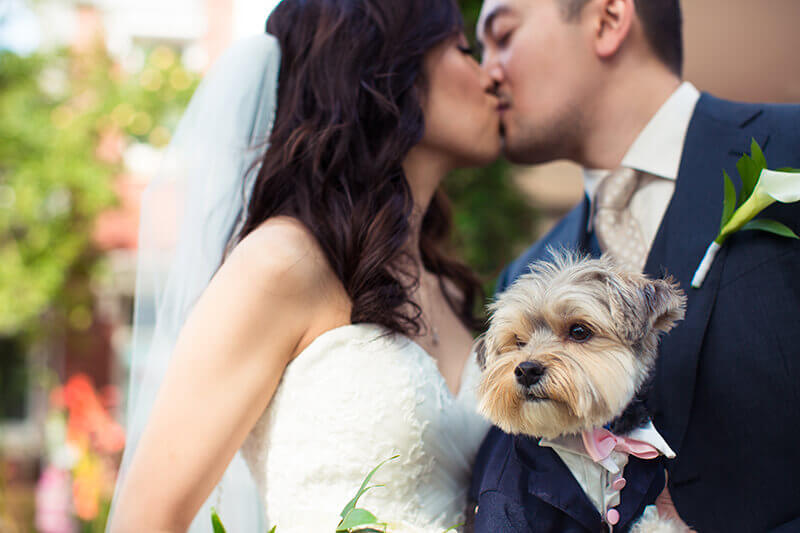 Edmonton Wedding Planner Testimonial